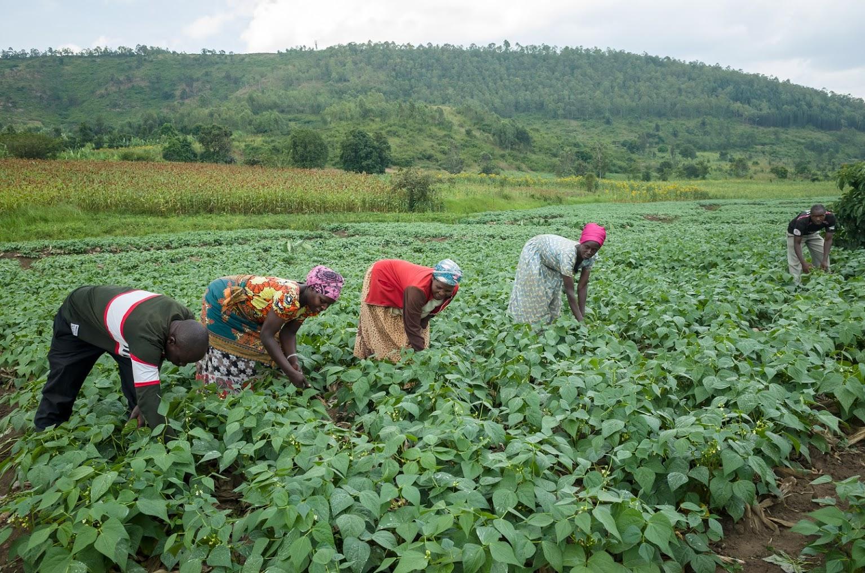 Rwanda June 2019